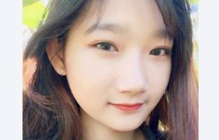 phuongm-ai's picture